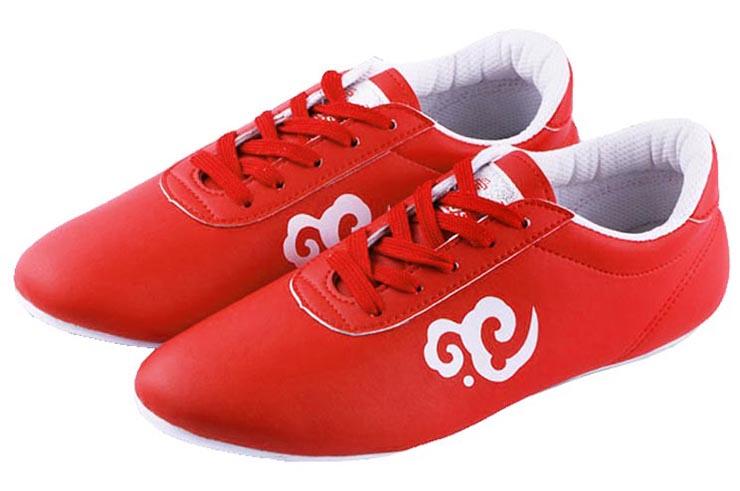 Zapatos de Wushu Ai Wu 2