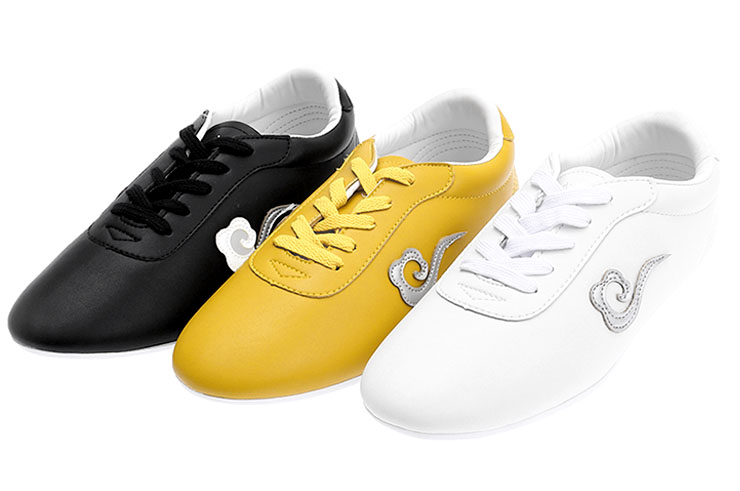WJT Wushu Shoes, Cloud