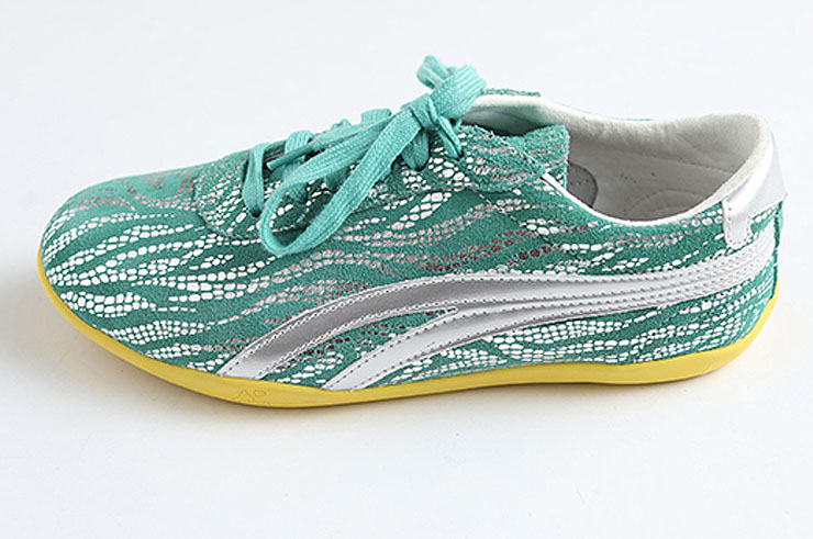 Zapatos de Taiji Wushu LongQuan, Colors