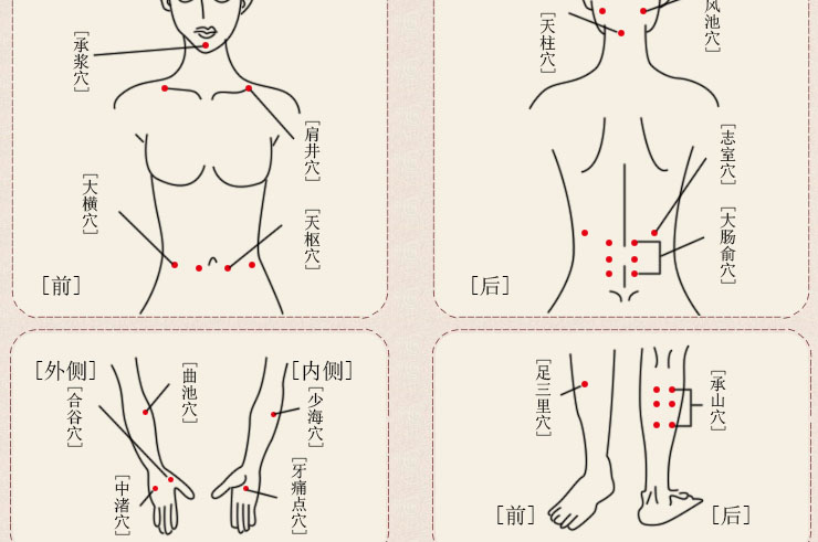 Appareil de Massage Multi-Fonctions