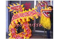 Costume Danse Du Dragon Milieu De Gamme 1