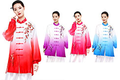 Shanren Gradient Taiji Uniform 1