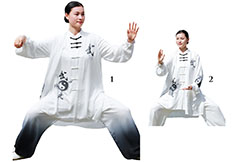 ZhengFengHua Taiji uniform, YinYang with cloak