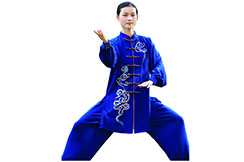 Traje de Taiji ZhengFengHua, ShouHuiYun