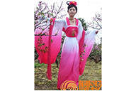 Hanfu, Tenue Chinoise Traditionnelle, Femme 19