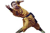 Tenue Shaolin Wuseng